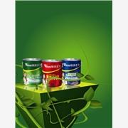 广东环保油漆涂料品牌 绿涂士漆 绿色养生第一品牌漆