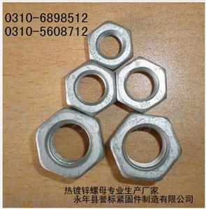 供应m6-m200热镀锌加大孔螺母热镀锌螺母