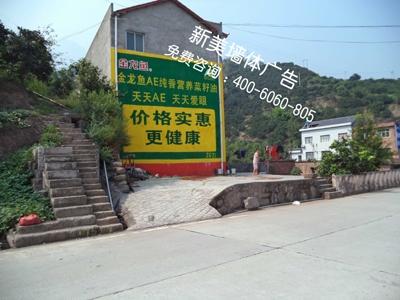 湖北墙体广告