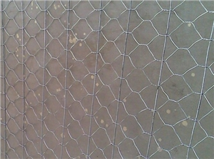 供应10*12cm镀锌石笼网