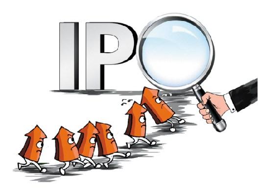 """大多数非""""独角兽""""IPO企业 业绩的""""隐形红线""""在哪?"""