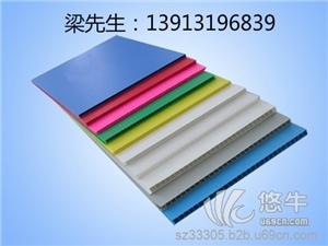 供应甪直钙塑板,中空板箱
