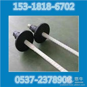供应螺纹钢锚杆 等强螺纹钢式树脂锚杆