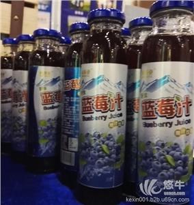 供应酸梅汁饮料生产线全套设备|2000瓶酸梅汁灌装机械