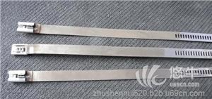 供应自锁式不锈钢扎带规格