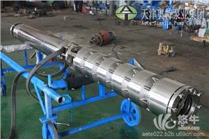 耐腐蚀不锈钢多级立式潜水海用泵