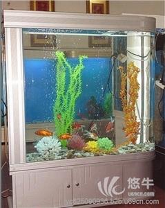 提供服务福州市清洗鱼缸景致护理鱼草养护鱼缸保养鱼缸维修