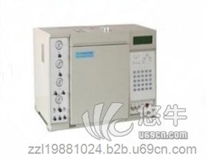 供应南昌氨基酸检测专用色谱仪