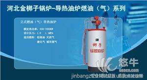 供应河北燃气茶炉+河北环保节能性采暖炉
