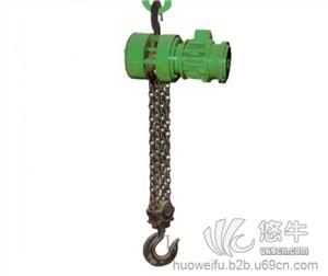 进口环链电动葫芦