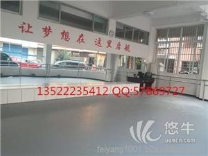 PU胶垫 产品汇 供应江苏舞蹈专用地胶厂家pvc专用舞蹈地胶垫