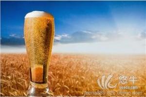 供应上海啤酒进口报关代理