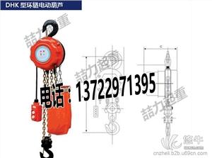供应优质DHK环链电动葫芦