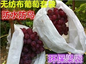 供应无纺布葡萄套袋无纺布水果套袋防水防鸟防菌环保果袋