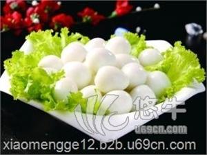 供应供鸽蛋鸽子蛋信鸽蛋禽蛋营养食品鸽蛋礼品蛋