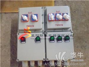 供应BXM(D)69系列防爆照明(动力)配电箱(ⅡB、IIC
