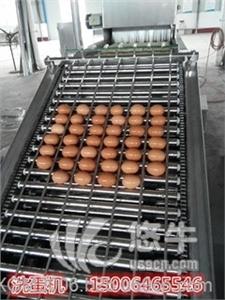 供应现货鸡蛋清洗机