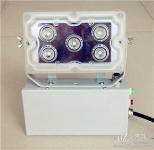 供应NFE9178应急LED照明壁灯GAD605免维护顶灯强光通道厂用应急灯
