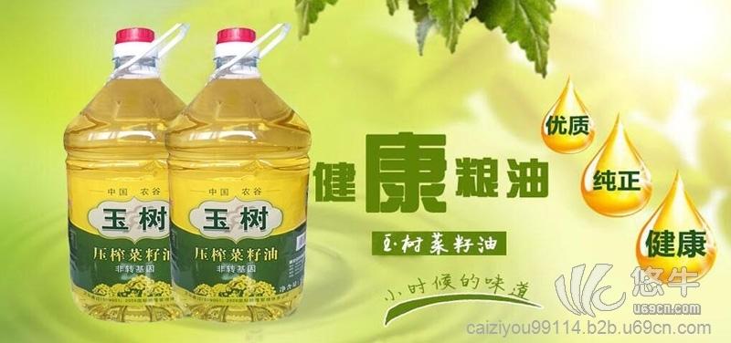 湖北玉树菜籽油非转基因物理压榨一级菜油价格实惠量大从优