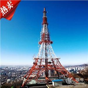 6供应专业生产电力角钢塔电力钢管塔