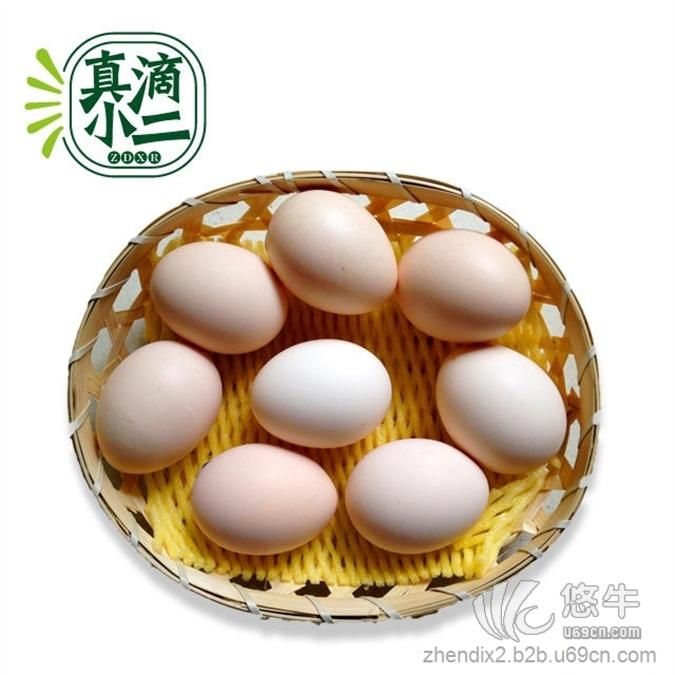 【农家自产土鸡蛋】¥36元/盒,每盒12枚3元/个