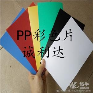 胶片 产品汇 磨砂PP片装订封面/黑色/白色/磨砂PP片材/彩色PP塑料胶片