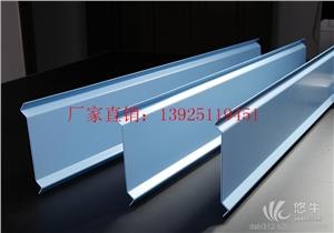 广东铝挂片吊顶/大型厂家直接供货