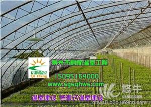 温室建设全钢架花梁温室大棚