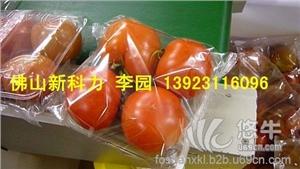 西红柿自动套袋打包机