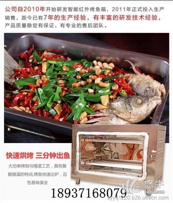 烤鱼电烤箱