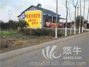 安徽亳州墙体广告