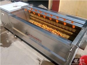供应鹏启MS-1500白萝卜蔬菜毛刷清洗机