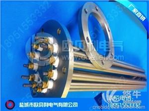 供应定制定制6U法兰式电热管6U法兰式电热管