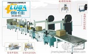 供应鲁佳专业食用油包装线设备制