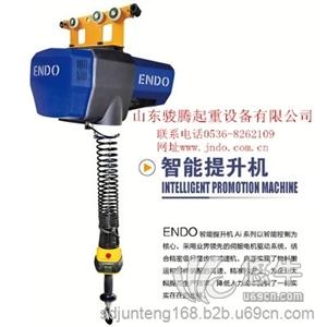 供应电动平衡器 伺服智能提升机 运行平稳可靠ENDO智能电动葫芦