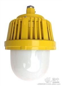供应山东炼油厂防爆平台照明灯   厂家直销防爆灯