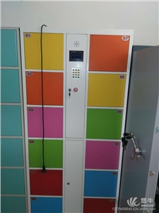 供应厂家直销快递柜寄存柜更衣柜手机充电柜厂家定制电子柜