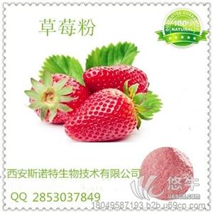 供应草莓速溶粉 草莓果汁粉 纯天然果汁粉 草莓速溶粉 草莓果汁