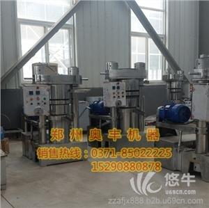 供应230型韩式快速液压榨油机 芝麻香油机芝麻榨油机