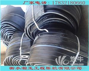供应_水池水渠施工缝用橡胶止水带