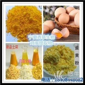 供应鸡蛋全粉200目干鸡蛋黄粉鸡蛋熟粉蛋黄粉鸡蛋全粉
