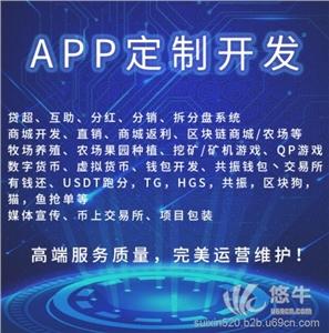 供应深圳龙岗共振钱包USDT跑分有錢还区块狗软件定制开发
