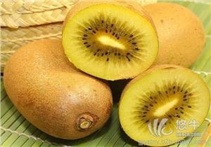 供应晚上吃猕猴桃能减肥晚上吃猕猴桃能减肥